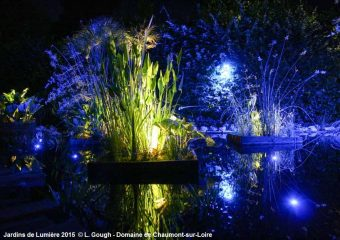 Quelques astuces pour profiter du Festival International des Jardins 2018