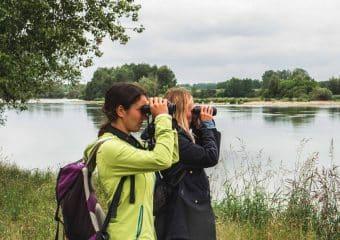 Les Maisons de la Loire : protéger le fleuve et ses paysages