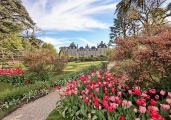 Une balade à vélo vers le Château de Cheverny et son jardin de tulipes !