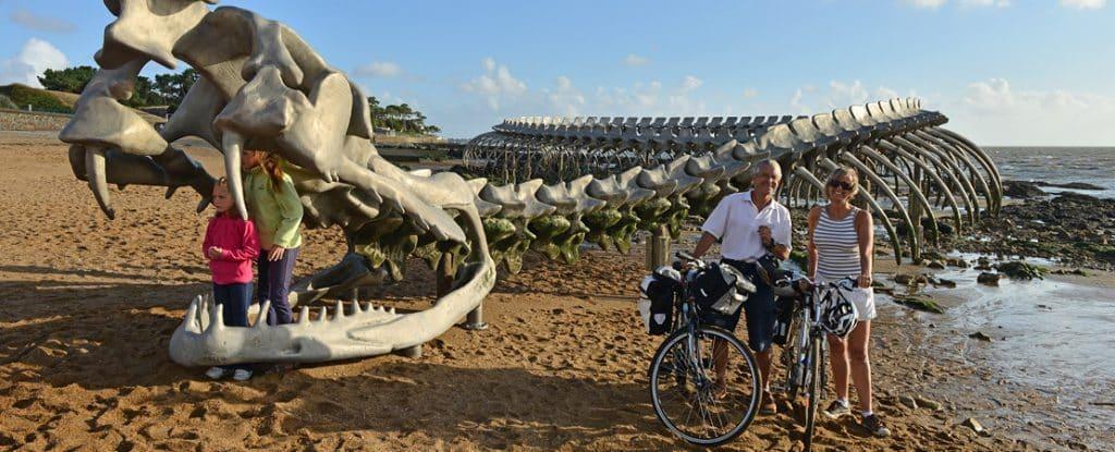 cyclistes au bord de l'océan
