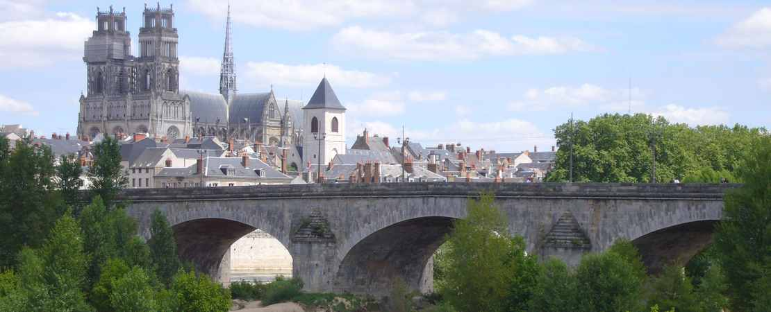 La ville d'Orléans et sa cathédrale