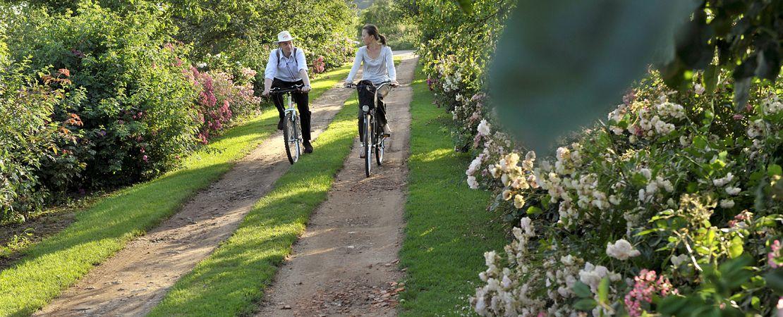 Couple de cyclistes dans un jardin