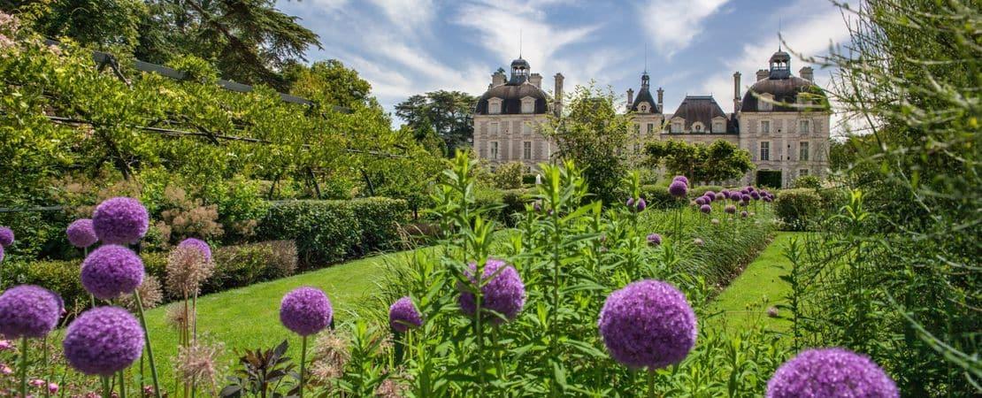 Vue sur le château de Cheverny depuis les jardins