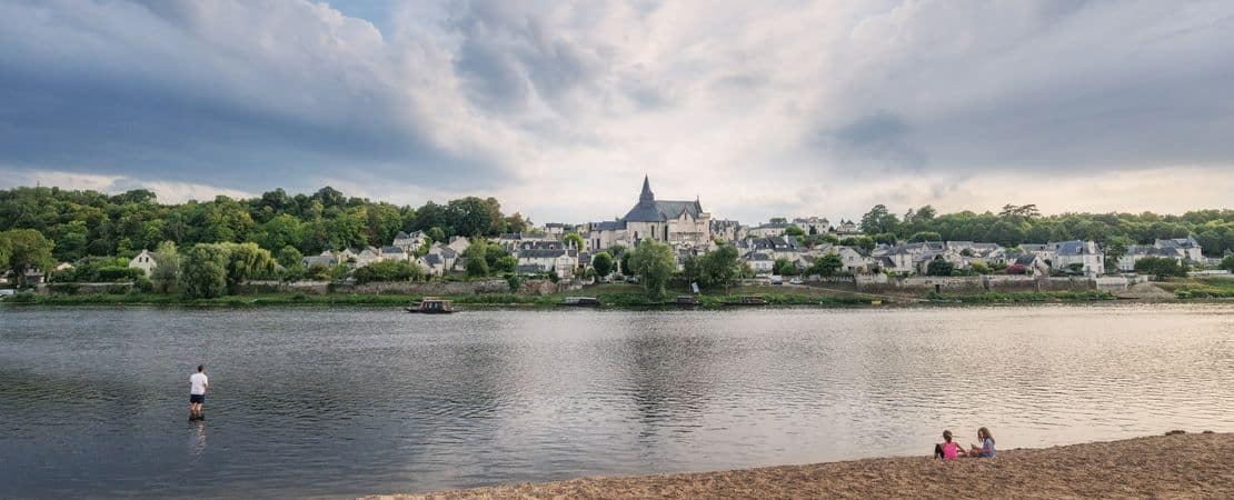 Vue sur le village de Candes Saint Martin depuis la rive en face