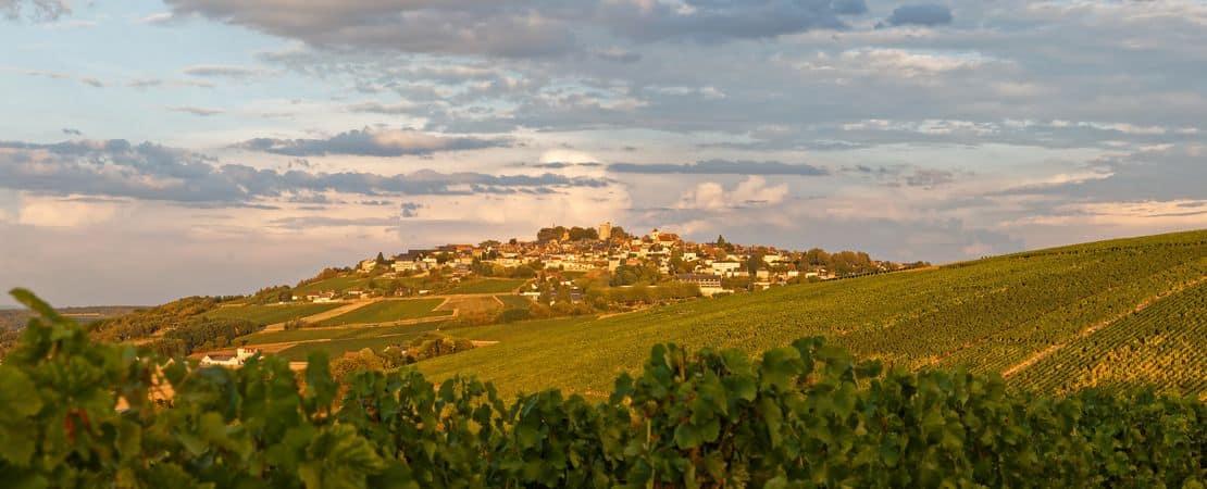 Vue depuis les vignes sur la colline et le village de Sancerre