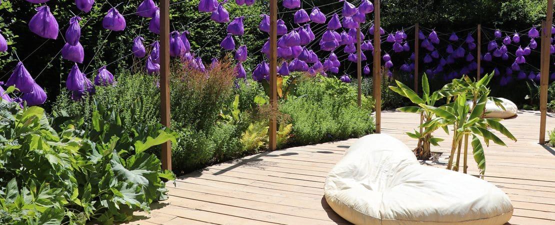 Une allée en bois avec un jardin et des fleurs mauves sur le côté
